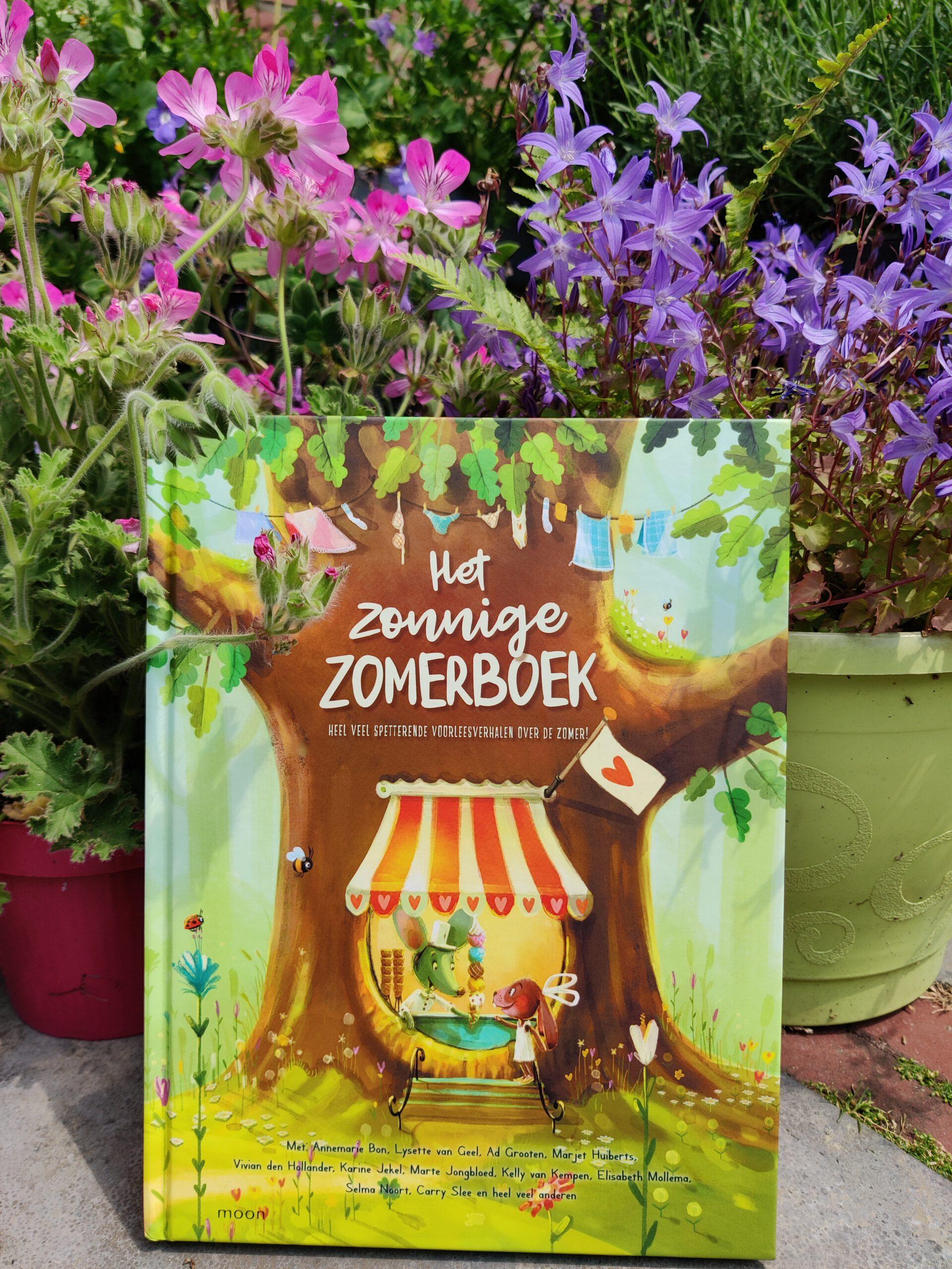 Het zonnige zomerboek