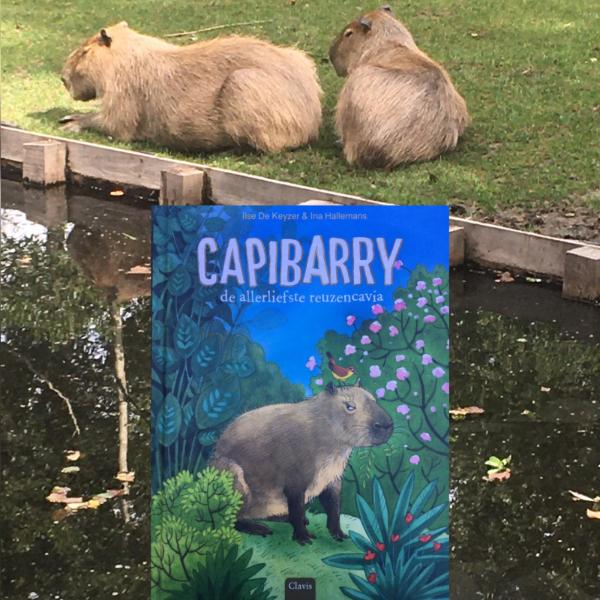 Capibarry - De allerliefste reuzencavia